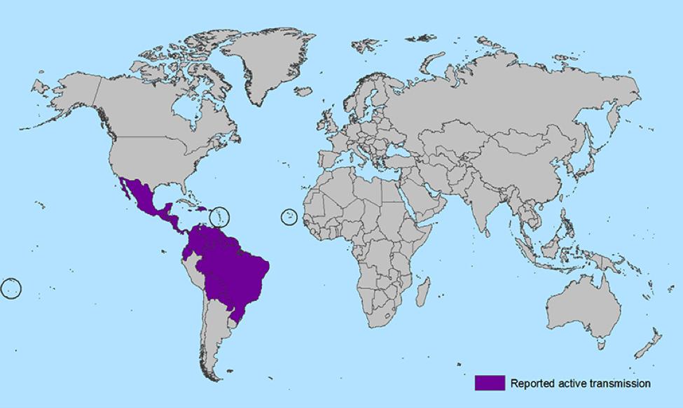 figure1-zika