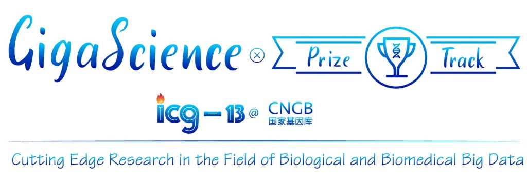 ICG13 Prize