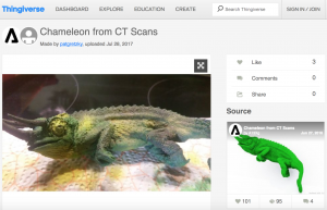 Lost worlds: via Sketchfab a 3D fossil offers a glimpse of