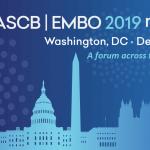 ASCB|EMBO 2019 logo
