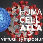 cell atlas symposium